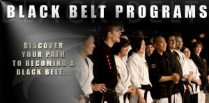 Become a Martial Arts Black Belt with Z-Ultimate