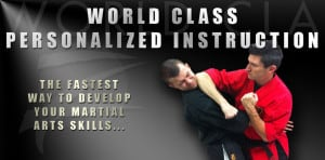 Personalized Martial Arts Instruction