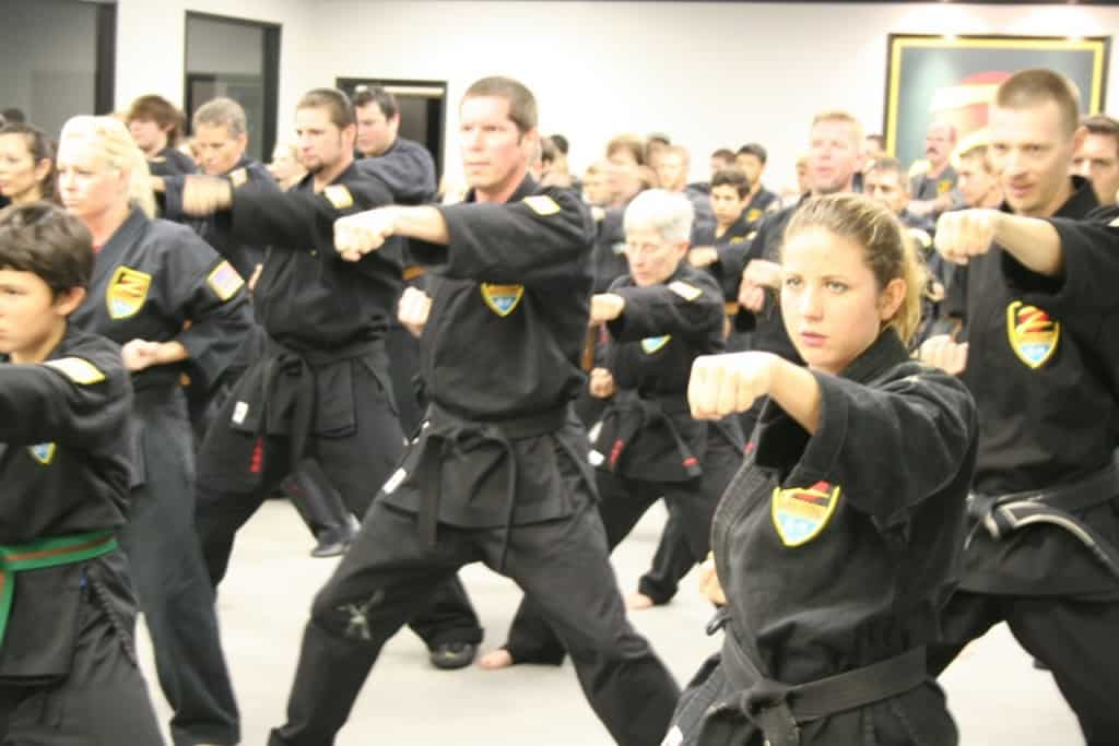 Martial Artists training together
