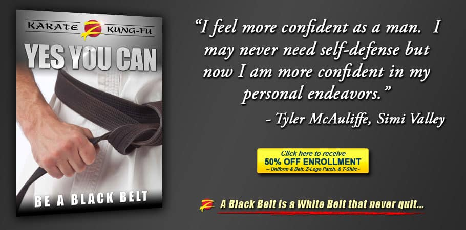 You - a Martial Arts Black Belt