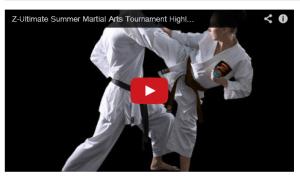Summer 2014 Martial Arts Tournament