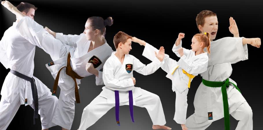 Martial Arts School Menlo Park