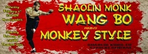Wang Bo Shaolin Monkey Seminars