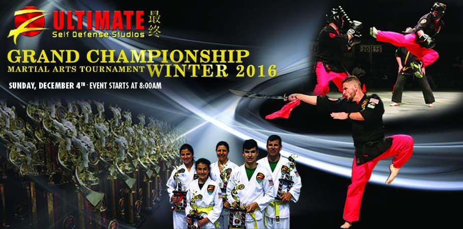 Martial Arts Tournament 2016
