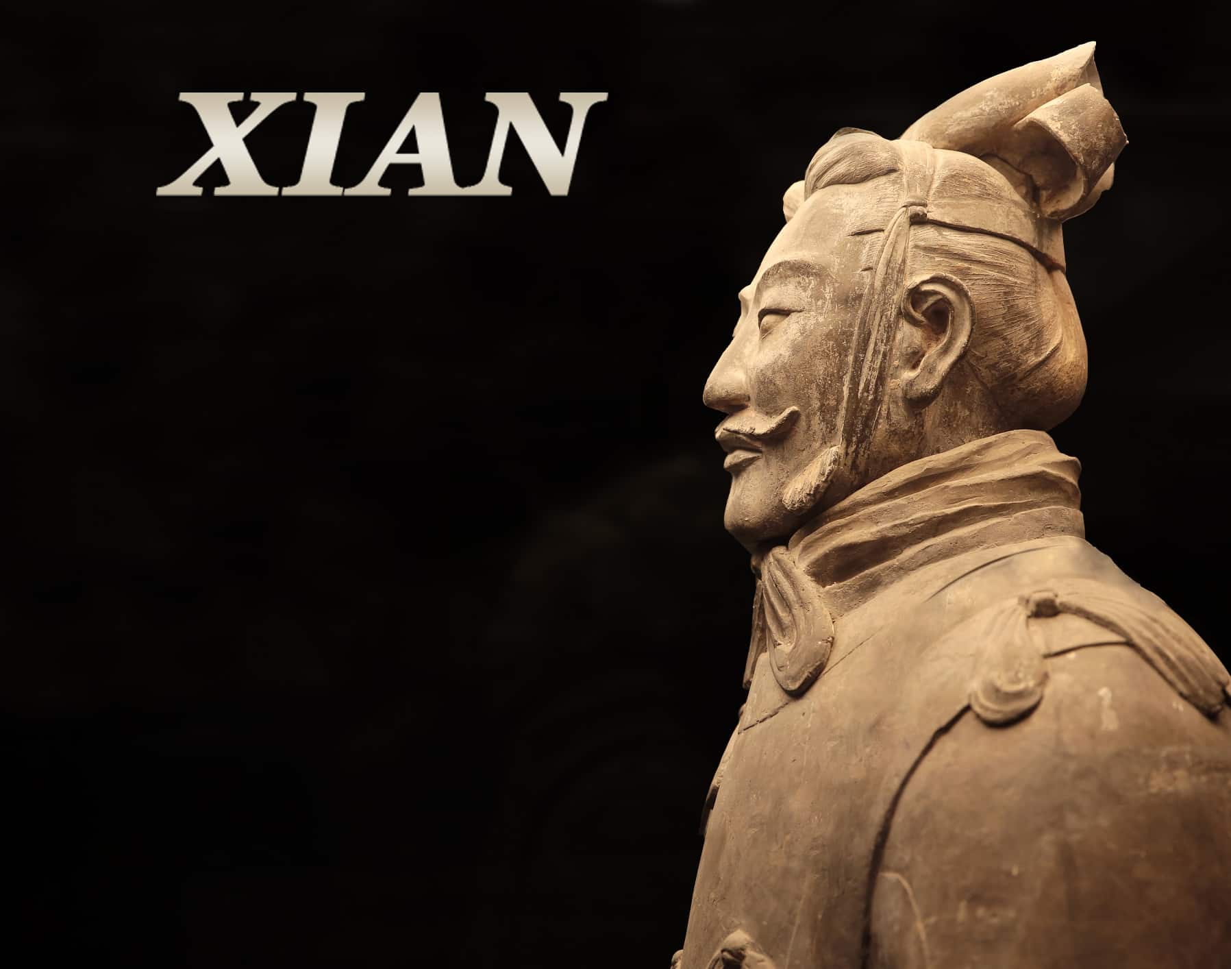 Terracotta Warrior General