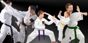 Littleton CO Karate School